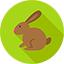 bunny-64